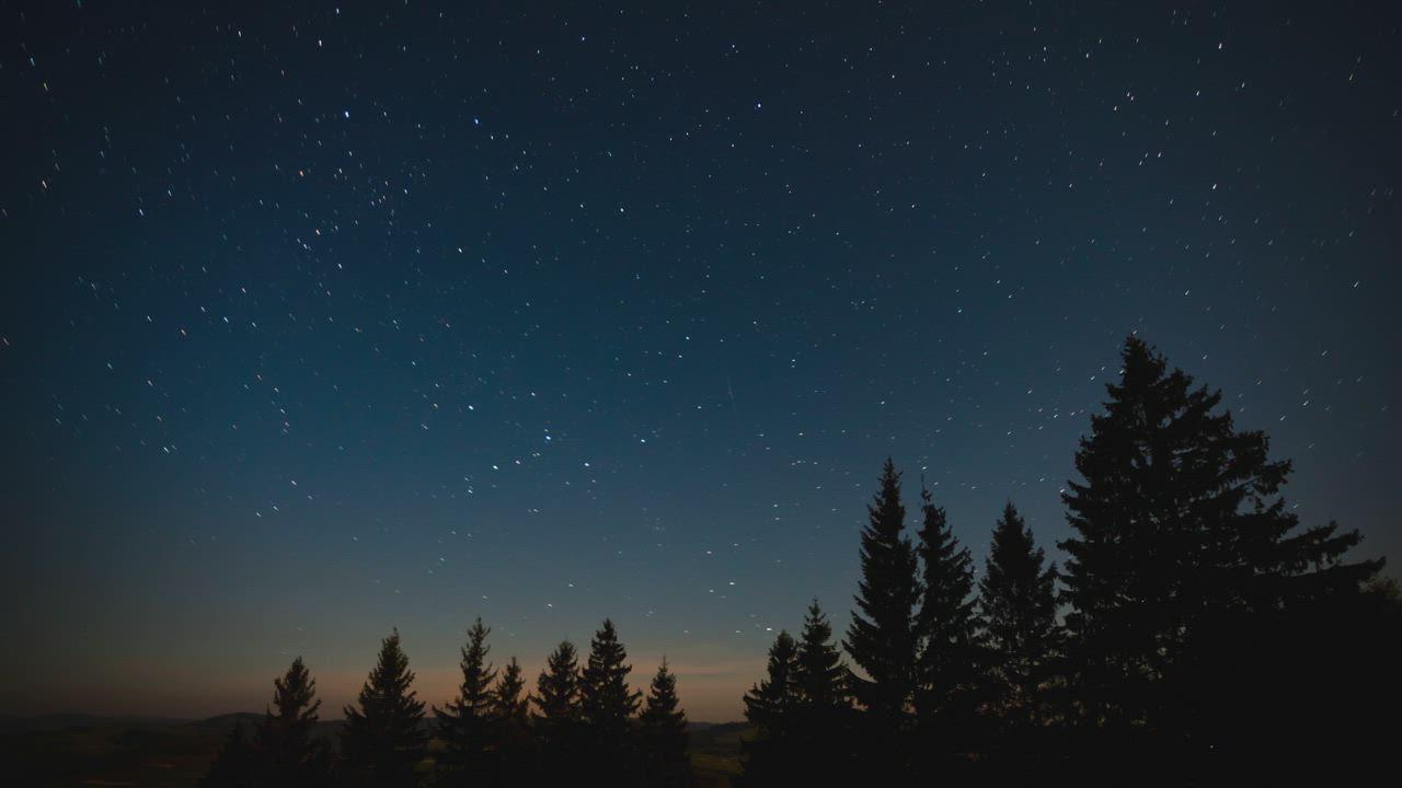 流星划过夜晚森林上星空视频素材-MOGRT